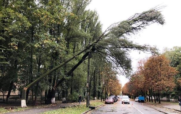В Киеве ураган сломал десятки деревьев
