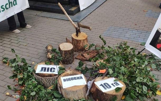 Под Офис генпрокурора активисты принесли пеньки
