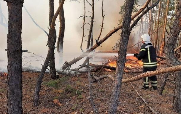 На Луганщине тушат последний очаг пожара