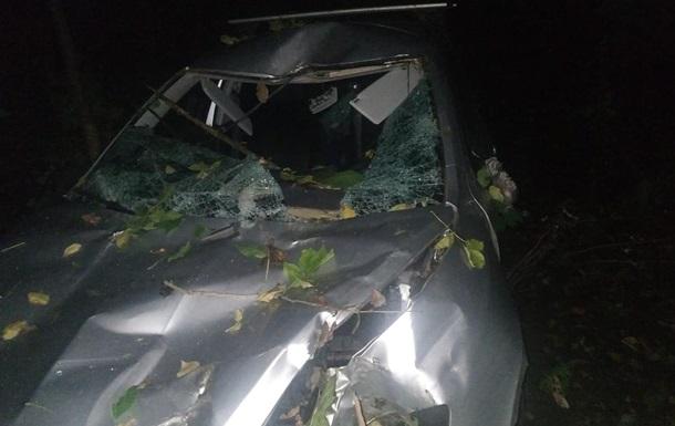 В Винницкой области дерево рухнуло на авто, есть жертвы
