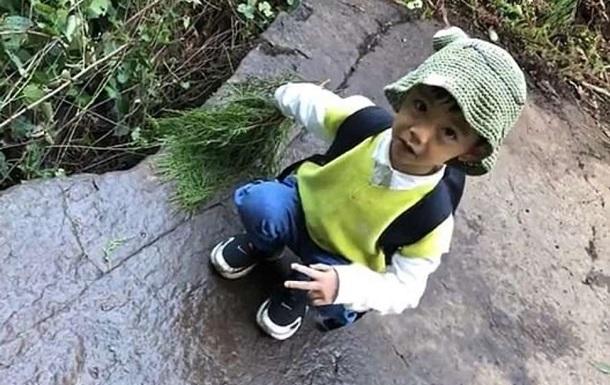 П пятилетний малыш распознал следы редкого динозавра