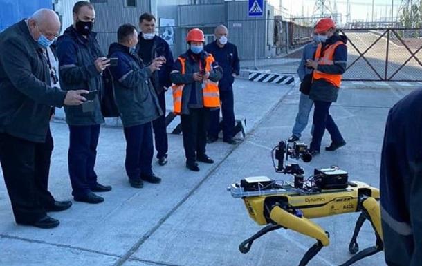 Робособака от Boston Dynamics работала в зоне отчуждения