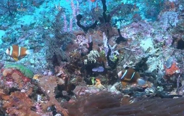 В Австралии обнаружили огромный коралловый риф
