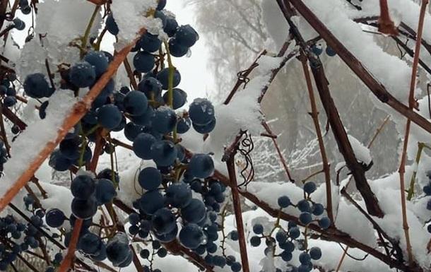 В трех областях Украины выпал первый снег