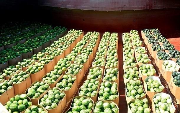 Украина установила рекорд по экспорту арбузов и дынь