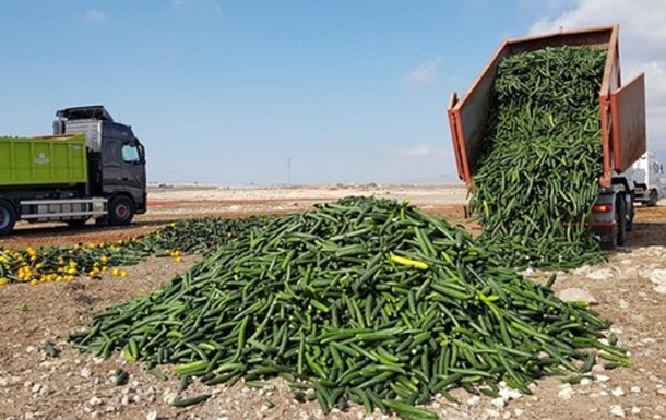 В Іспанії знищують урожай через обвал цін