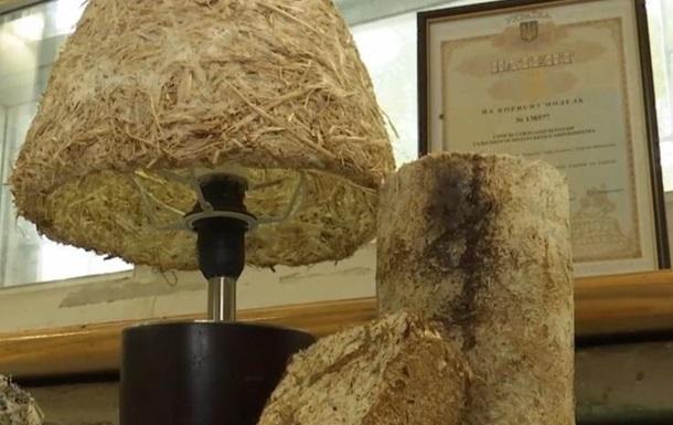 Ученые из Херсона создали  грибной пластик