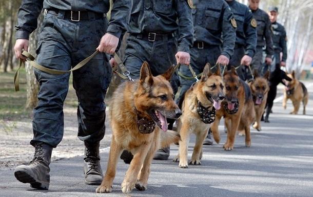 Службові собаки за рік виявили центнер наркотиків