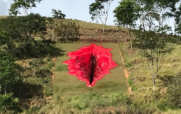 В Бразилии появилась инсталляция в форме вагины