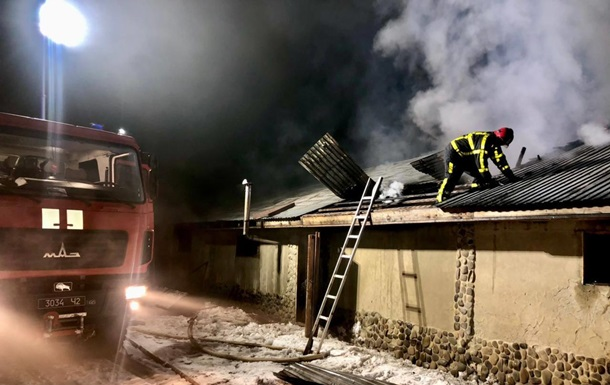 На Закарпатье при пожаре погибли 30 свиней