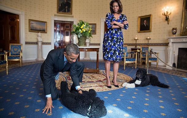 Дипломатия собак. Зачем политикам домашние питомцы