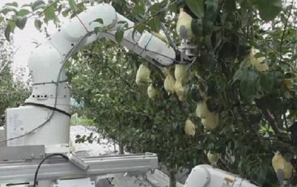 У Японії створили робота-фермера