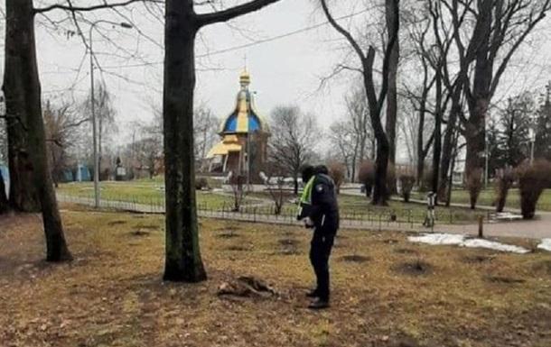 В киевском Гидропарке неизвестные отравили собак