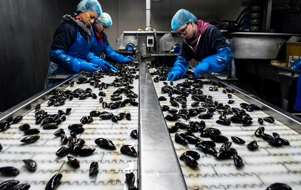 Експерти назвали професії з найвищим ризиком смерті від коронавірусу