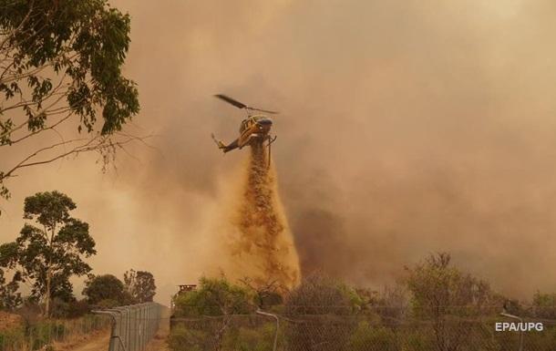 Масштабные лесные пожары начались в Австралии