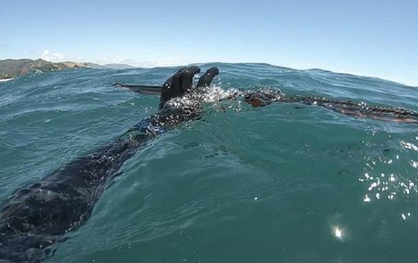 Акула напала на мисливця і вкрала улов