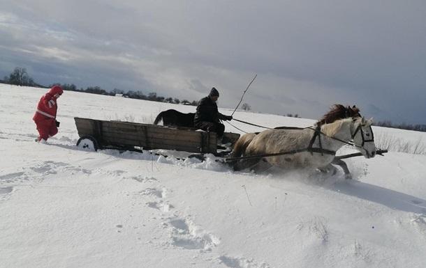 На Житомирщині дівчину везли до швидкої на конях