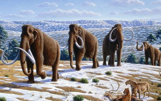 Ученые выяснили, почему исчезли мамонты в Северной Америке