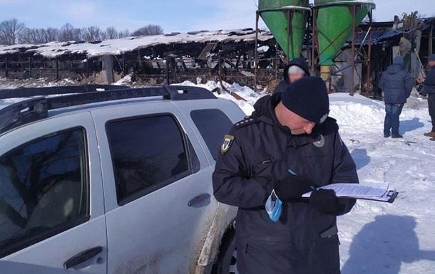 У Чернігівській області під час пожежі згоріли сотні свиней