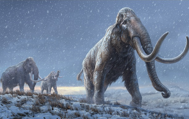 Ученые расшифровали древнейшую ДНК мамонта