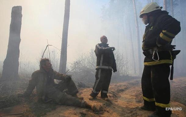 Рада передумала штрафовать за поджоги лесов