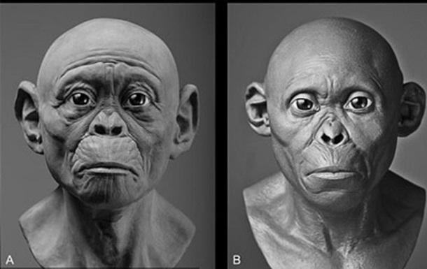 Вчені відтворили вигляд стародавніх предків людини