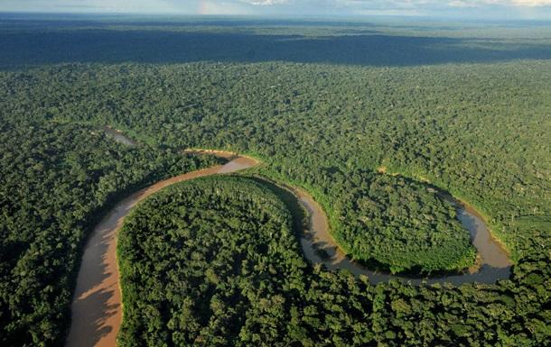 Екологи б ють на сполох: лише третина тропічних лісів у світі незаймана
