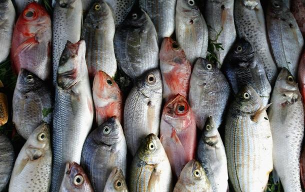 Майже 40%. Виявлено глобальну фальсифікацію риби
