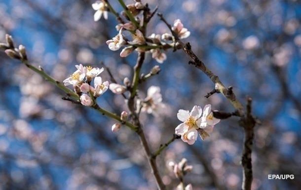 Синоптики спрогнозировали погоду в апреле