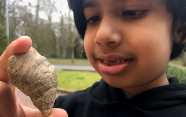 У Британії дитина знайшла скам янілість віком 500 мільйонів років