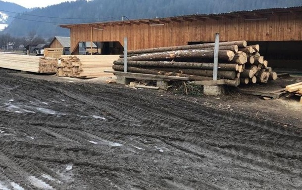 В Україні розкрили масштабну схему нелегального експорту деревини