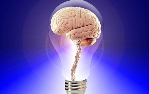 У біочипі виростили міні-мозок