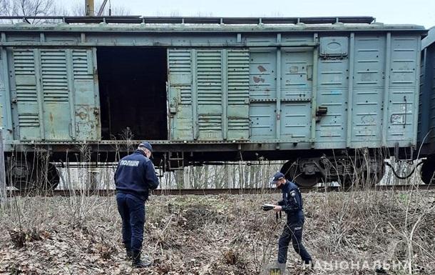 На Черниговщине погиб подросток, пытавшийся сделать селфи на крыше поезда