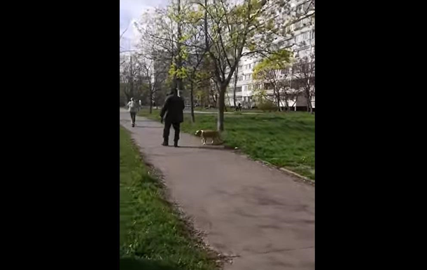 В Киеве пес порвал собаку: на хозяина завели дело
