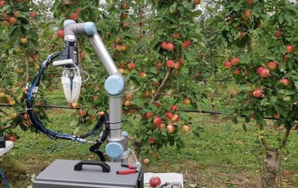 В Австралии создали робота для сбора урожая яблок