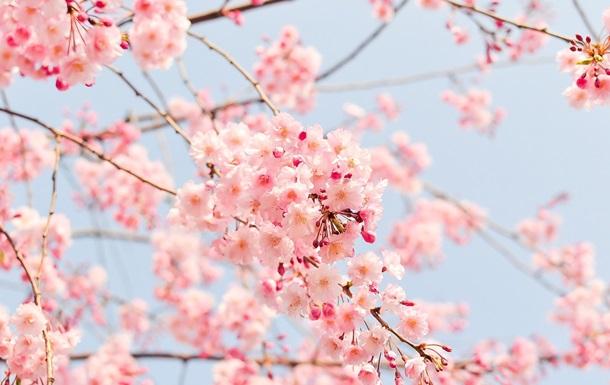 Праздники 30 апреля: факты, традиции, приметы