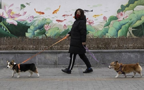 В России выпустили первую партию COVID-вакцины для животных