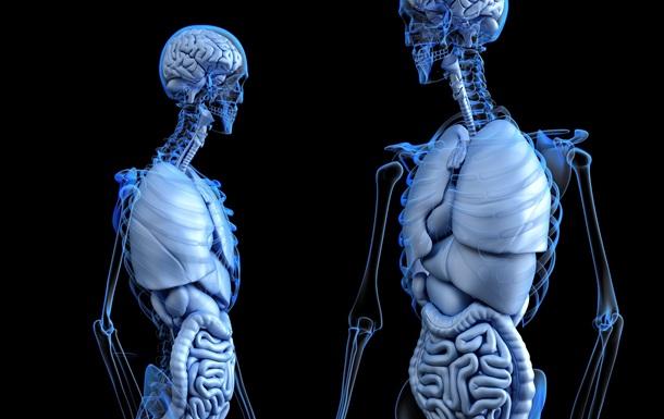 Обнаружен механизм, устраняющий стареющие клетки