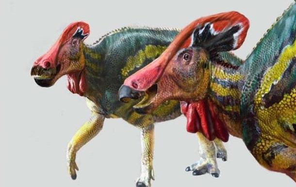 В Мексике найден новый вид древнего динозавра