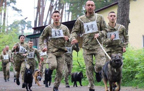 Пограничники провели кросс с собаками