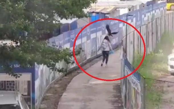 У Києві ворона атакує жінок