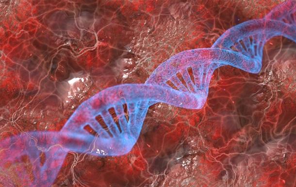 Людський геном повністю розшифрували