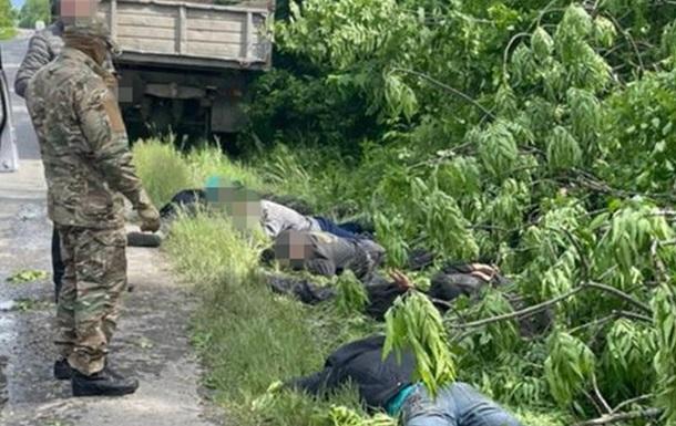 СБУ на Хмельниччине задержала  черных лесорубов