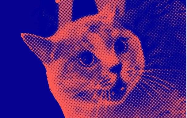 Музыканты устроили коллаборацию под песню с котом-солистом