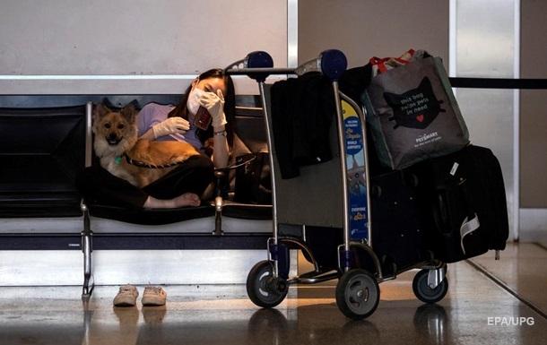 США вводять заборону на ввезення собак з низки країн, включаючи Україну