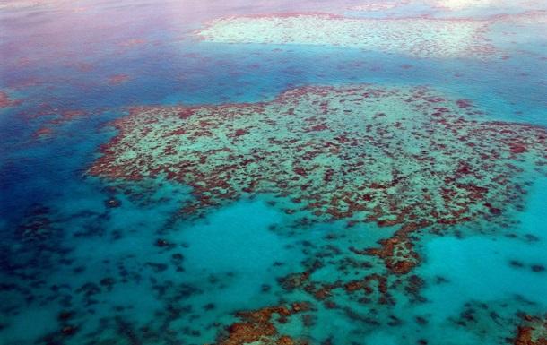 Великий Бар єрний риф у небезпеці через кліматичні зміни