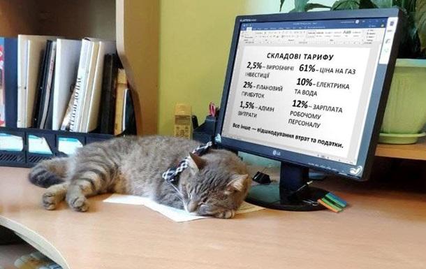 В Черновцах тариф на тепло вырос на 70%