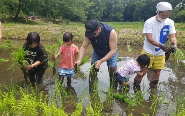 В Японии посол Украины посадил поле риса