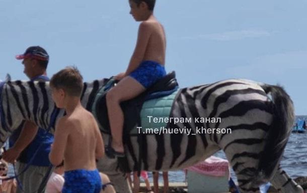 У Скадовську відпочивальників катали на коні, перефарбованому в зебру