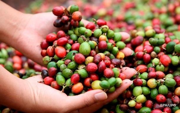Цены на кофе подскочили до максимума за пять лет